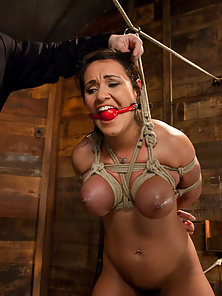 Big titted Charley Chase roped in a steamy lesbian action