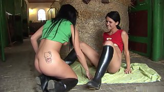 Lovely Babes Pleasing Each Other Through Toying Action
